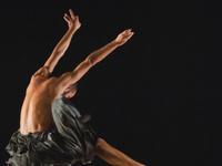 Performing Art Series: Kibbutz Contemporary Dance Company