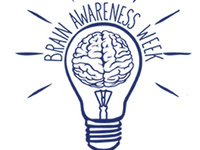 Brain Awareness Week: A Top-to-Bottom View of Your Brain