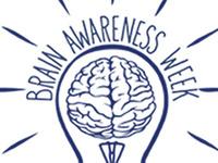 Brain Awareness Week: NeuroNevada Student Scientists