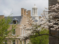 Scheinman Institute Student Mediation Scrimmage