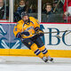 Quinnipiac University Men's Ice Hockey at UMass