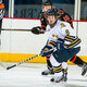 Quinnipiac University Women's Ice Hockey at Rensselaer