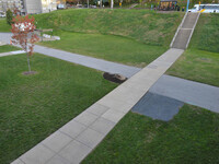 Paws Lawn