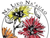 The 13th Annual Na Liko Na'auao