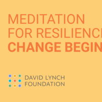 Meditation for Resilience: Change Begins Within