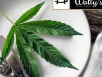CBD & CANNABIS EDUCATION DINNER