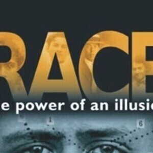 reaction to race the power of illusion essay Get even a better essay we will write a custom essay sample on race – the power of illusion topics specifically for you order now.