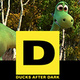 Ducks After Dark: The Good Dinosaur