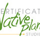 Elective Class: Ferns- Course full, waiting list available
