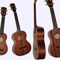 Continuing (Intermediate) Ukulele