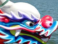 Rose Festival Dragon Boat Races