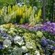 Greenville County Master Gardener Training Class Application Period