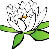 Tuesday Open Meditation