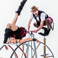 Cirque Mechanics, Pedal Punk