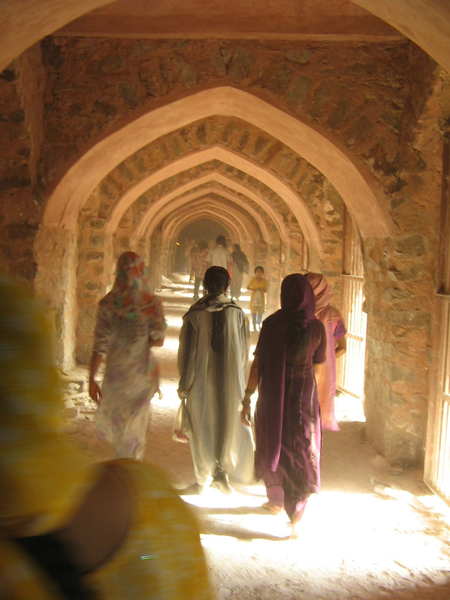 "SAP: ""The Afterlife of Islamic Architecture: Ethics, Ecology, and Other Times in the Medieval Ruins of Delhi"""
