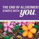 2016 Walk to End Alzheimer's