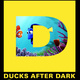 Ducks After Dark: Finding Dory