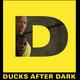 Ducks After Dark: Central Intelligence