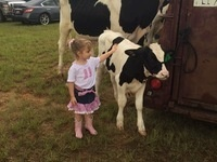 Laurens County 4-H Bucket Calf Project Registration