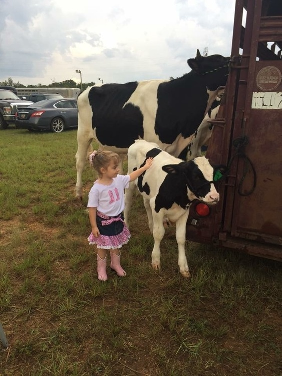Laurens County 4-H Bucket Calf Project Registration