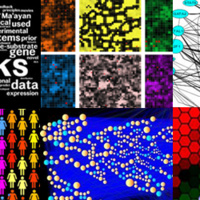 Network Analysis in Systems Biology | MOOC on Coursera