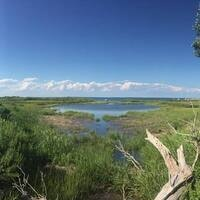 Cape Pogue Wildlife Refuge