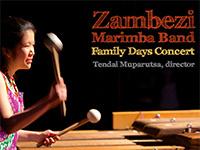 Zambezi Marimba Band – Family Days Concert