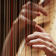 Recital for Berkshire Symphony Soloists Competition