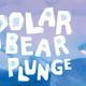 Annual Polar Bear Plunge