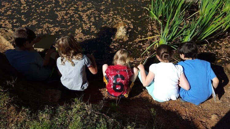 SCBG Junior Naturalist Club
