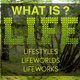 What is Life? Lifestyles • Lifeworlds • Lifework