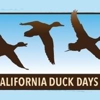 California Duck Days