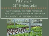 IGI Presents: DIY Hydroponics