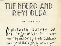 """Object of the Month: """"The Negro and Reynolda"""""""