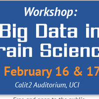 Big Data in Brain Science