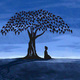 Mindfulness Based Self-Compassion Program: Introduction Session
