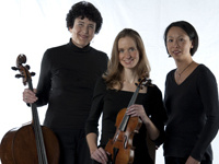 Resident Artist Series - Trio 180