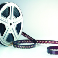 Film Festival    Does Diversity Matter? Examining Differences and Promoting Understanding