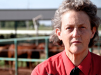 Dr. Temple Grandin | Understanding Animal Behavior