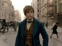ASLC Blockbusters Presents: Fantastic Beasts & Where to Find Them