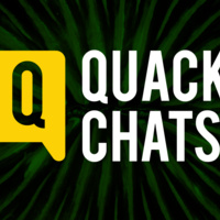 Quack Chats: Fractals in Nature, Art and Human Vision
