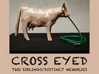 Gallery Exhibit, Cross-Eyed: Two Siblings / Distinct Memories