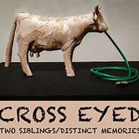 Gallery Exhibit, Cross-Eyed: Two Siblings / Distinct Memories