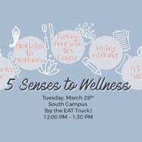 5 Senses to Wellness