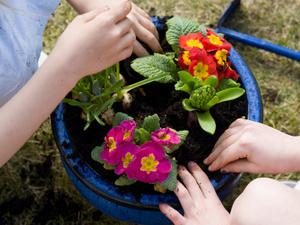 CAB Giveaway: Flower Potting