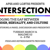 Intersections: Bridging the gap between gender, sexuality, and culture