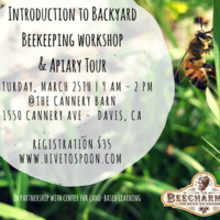 Intro to Backyard Beekeeping