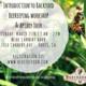 Intro to Backyard Beekeeping