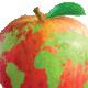 WFU Global Food Committee Meeting