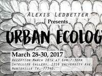 SHSU Satellite Gallery Presents Urban Ecology